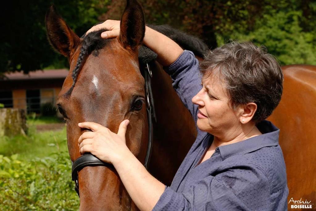 Osteopathische Behandlung eines Pferdes