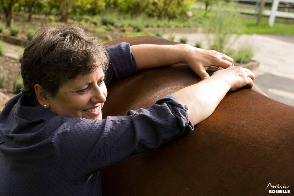 Rückenbehandlung des Pferdes
